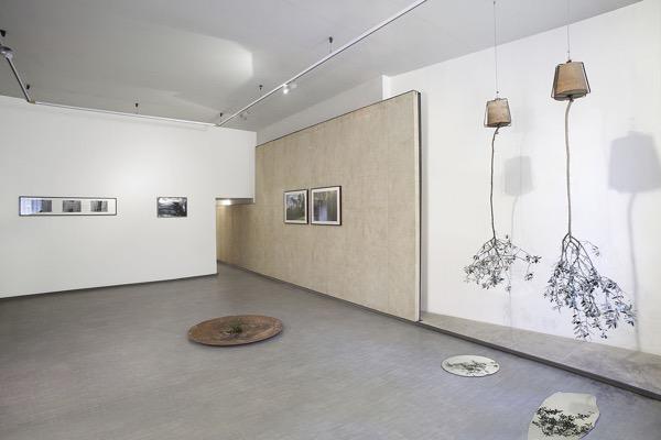 Giarina Gallery